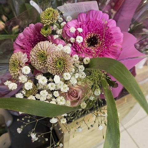 Podari cvetje namesto plastike